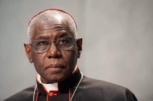 Le-cardinal-Sarah-encourage-la-Manif-pour-tous_article_popin.jpg